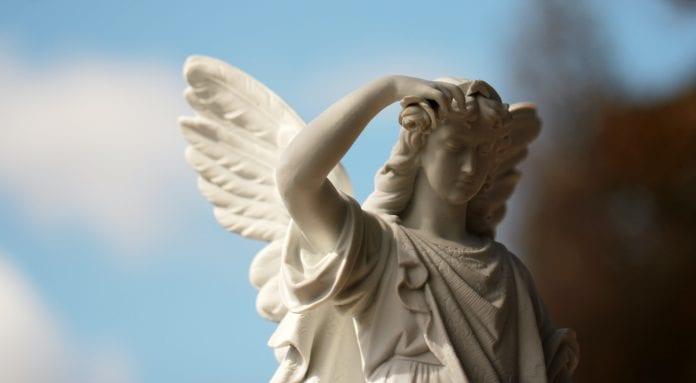 angelo statula