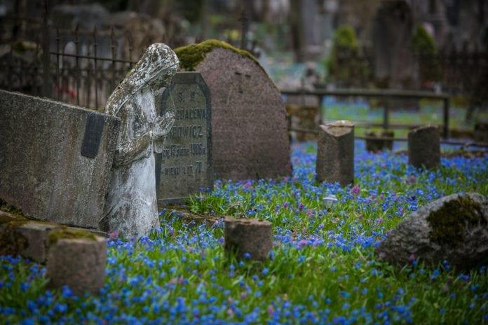 Bernardinų kapinės Užupyje, užlietos sibirinių scylių