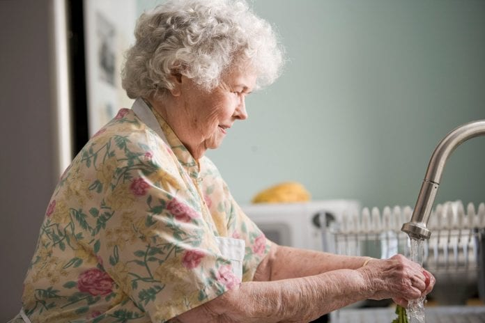 senjorė plauna indus