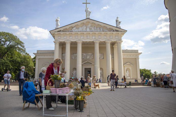 Žolinės Vilniaus Katedros aikštėje