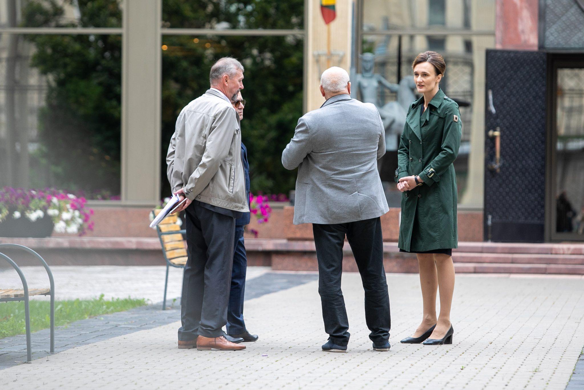 Seimo Pirmininkė susitiko su Lietuvos šeimų sąjūdžio atstovais