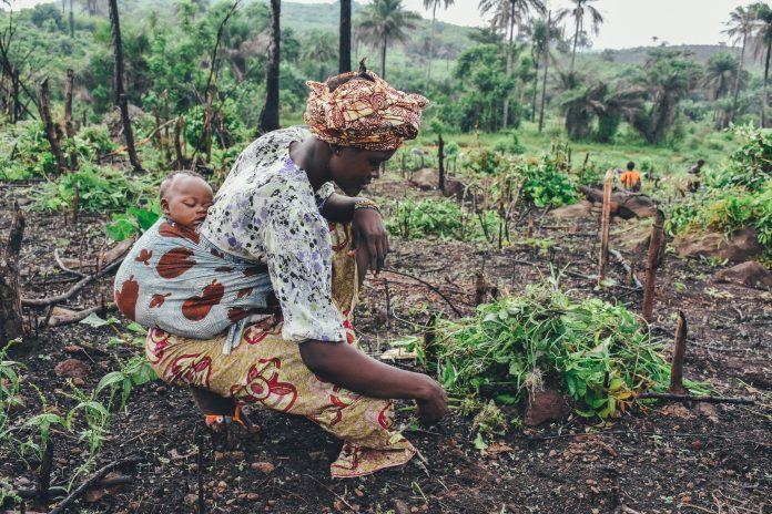 Afrikos gyventojai